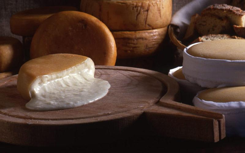 پنیر Serra da Estrela
