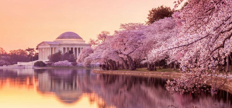 واشنگتن