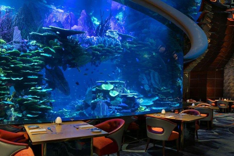 رستوران دبی