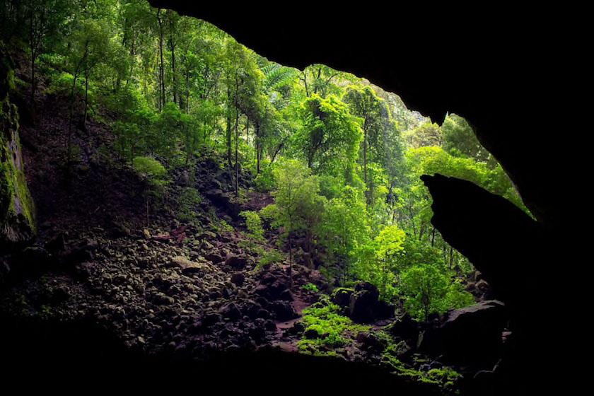پارک ملی گانانگ مولو
